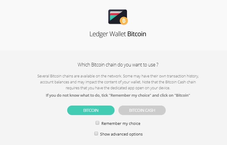 Bitcoin Cash und Ledger